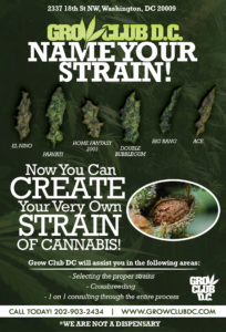 Grow Club Create Strains TO POST