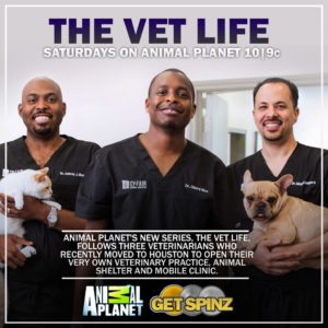The Vet Life Animal Planet Get Spinz